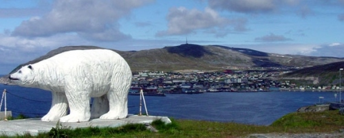 white-bear-Hammerfest