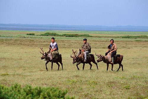 evenki-riding