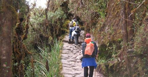 trail-machu-picchu-peru