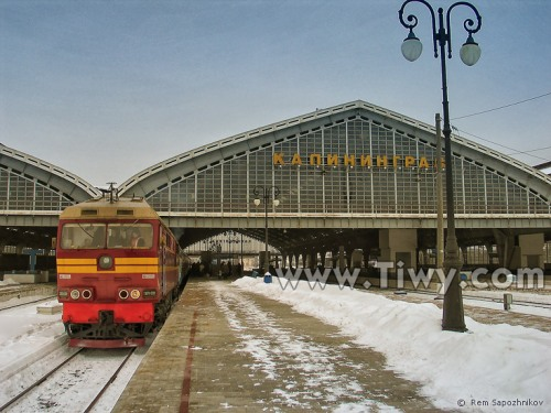 train-kaliningrad